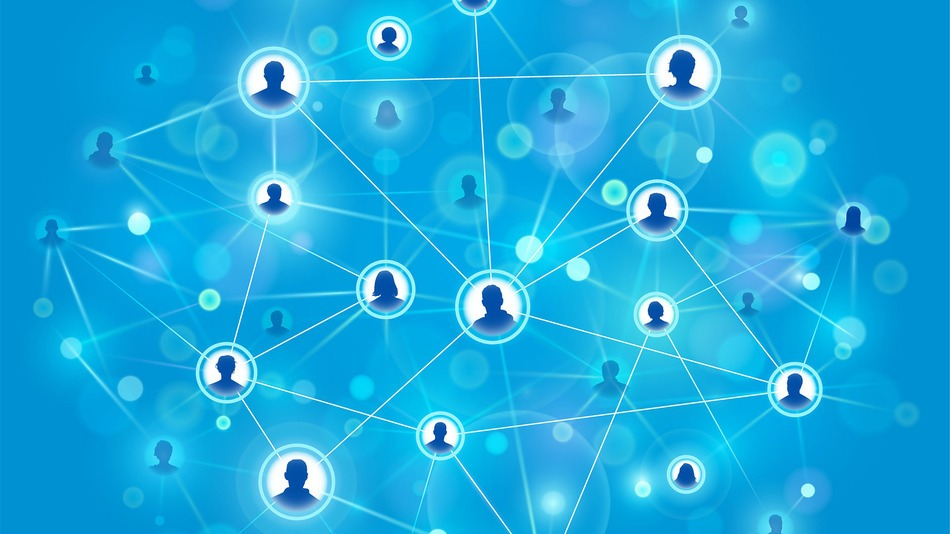 Bushiness Networking Through Groups