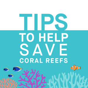 Tips_to_save_coral_reefs